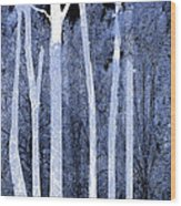 Trees Square Wood Print