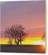 Trees Watching The Sunrise Panorama View Wood Print