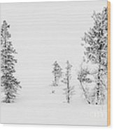 Trees With Hoar Frost Wood Print