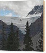 Treescape In Canada Wood Print
