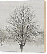 Treeternity Wood Print