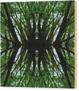 Treetops Abstract Wood Print