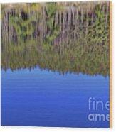 Treflections Wood Print