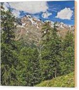 Trentino - Pejo Valley On Summer Wood Print