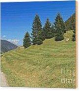 Trentino - Val Di Sole Wood Print