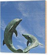 Tresco Dolphins Wood Print