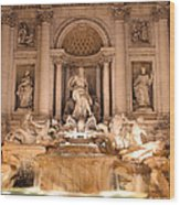 Trevi Fountain At Night Wood Print
