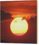 Tri Colored Sunset Wood Print