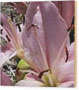 Tri Pink Lily Wood Print