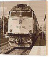 Tri Rail 808 Wood Print