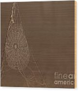 Triangle Web Wood Print