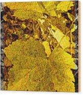Tribute To Autumn Wood Print