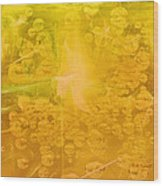 Tribute To Dew Wood Print