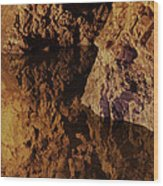 Trick Of The Light Wood Print by Odd Jeppesen