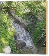 Trickle Down Fountain. Wood Print