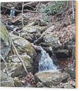 Trickle Of Water Wood Print