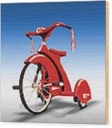Trike Wood Print