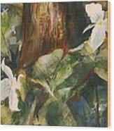 Trillium Woods 3 Wood Print