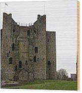 Trim Castle - Ireland Wood Print