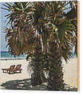 Trincomalee Palms Wood Print