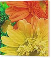 Trio Of Bright Colored Daisies Wood Print