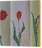 Trio Of  Red Tulips Wood Print