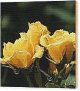 Trio Of Yellow Roses Wood Print