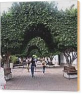 Triple Arches Wood Print
