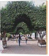 Triple Arches Wood Print