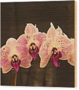 Triple Orchid Arrangement 1 Wood Print