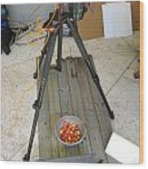 Tripod And Cherries On Floor Wood Print