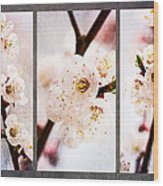 Triptych Light Of Spring 1 Wood Print
