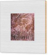 Triumph_09.23.12 Wood Print