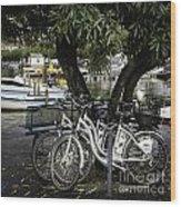 Trois Bikes Wood Print