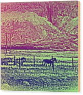 Now And Then You Dream Of The Old Fields Back Home  Wood Print