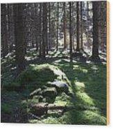 Troll's Grave Wood Print