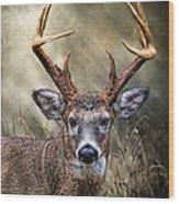 Trophy 10 Point Buck Wood Print