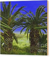 Tropical Beach Light Hdr Effect Wood Print