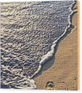 Tropical Beach With Footprints Wood Print
