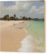 Tropical Caribbean Beach Wood Print