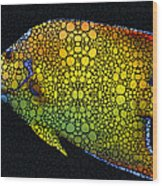 Tropical Fish 12 - Abstract Art By Sharon Cummings Wood Print