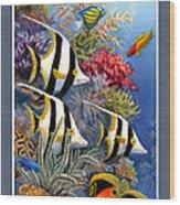 Tropical Fish A Wood Print