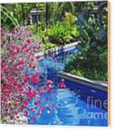 Tropical Garden Around Pool Wood Print