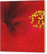 Tropical Hibiscus - Antigua Wind 01a Wood Print