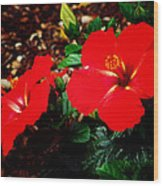 Tropical Hibiscus - Starry Wind 01a Wood Print