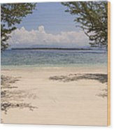 Tropical Island Beach Wood Print