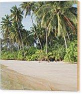 Tropical Island Beach Scenery Wood Print