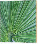 Tropical Leaf Wood Print