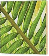 Tropical Leaf Wood Print by Elena Elisseeva