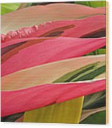 Tropical Leaves Abstract 3 Wood Print